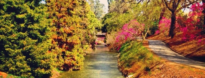UC Davis Arboretum is one of Automne '14.