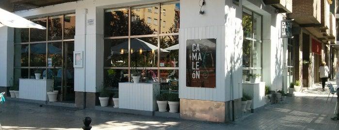 Restaurante Camaleón is one of Valencia.