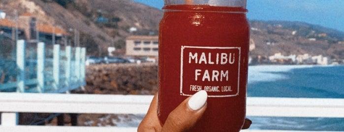 Malibu Farm Restaurant & Bar is one of Lieux qui ont plu à Chris.