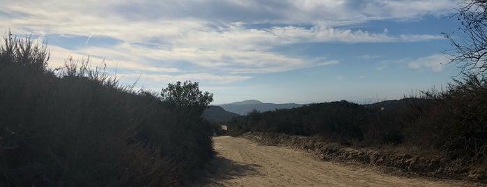 Willow Trail (top) is one of Tempat yang Disukai chris.