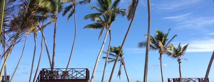 Breathless Punta Cana Resort & Spa is one of Posti che sono piaciuti a Ryan.