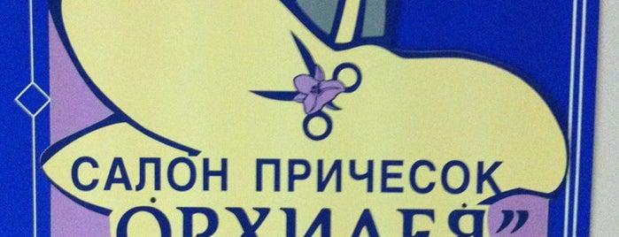 Салон красоты Орхидея is one of 3Dpoisk : понравившиеся места.