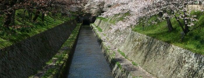 琵琶湖疏水 第一トンネル is one of 近江 琵琶湖 若狭.