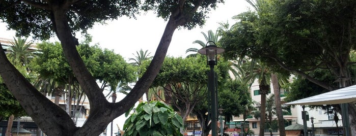 Plaza del Charco is one of Tenerife.