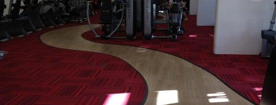 Ethos Gym is one of Orte, die ALi gefallen.