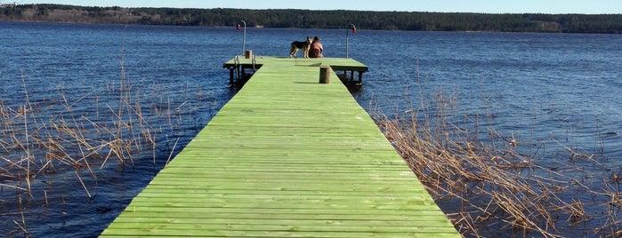 Суходольское озеро is one of Lugares favoritos de Lentochka.