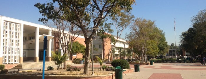 Los Angeles City College (LACC) is one of LA🏄🏾♀️.