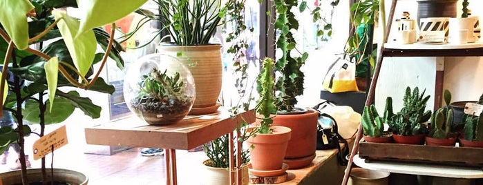 Solabee Flowers & Botanicals is one of places I want to go.