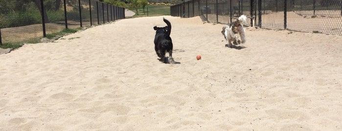Sea Terrace Dog Run is one of Posti che sono piaciuti a Toni.