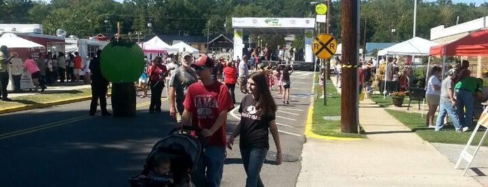 Whistle Stop Festival is one of Posti che sono piaciuti a TracyJ.