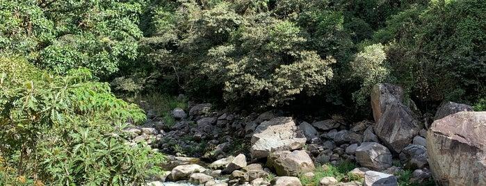 Los Jardines de Mandor is one of Llama-rama.