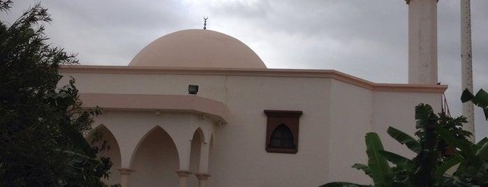 Albir Mosque ... مسجد البر is one of Orte, die zanna gefallen.