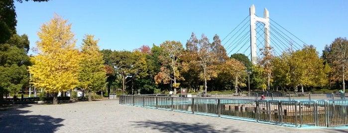 木場公園 is one of Find My Tokyo.