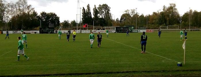 Jahnsportstätte | SV Grün-Weiß Ahrensfelde is one of Lieux qui ont plu à giovanni battista.