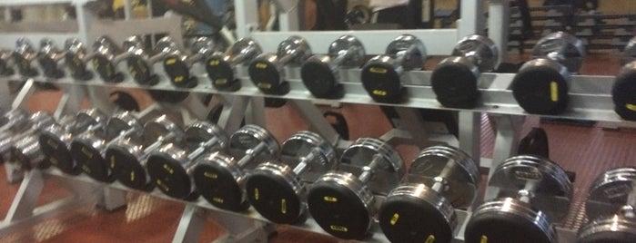 Total Fitness Gym is one of Locais curtidos por Juan.