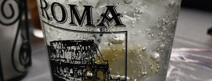 Roma Italian Ristorante is one of todo.delaware.