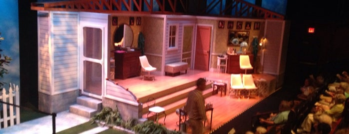 American Stage Theatre is one of Hidden Treasures of Tampa Bay.
