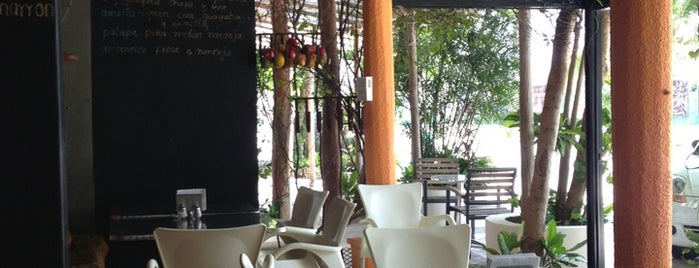 Sangha-Rito is one of Playa Del Carmen eats.