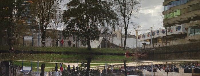 Erasmus Paviljoen is one of IFFR - Festivallocaties & Tips.