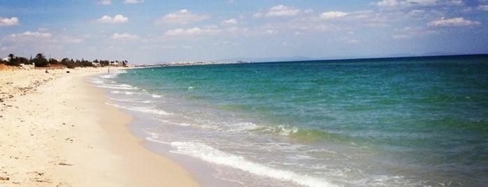 Palmyra Beach is one of ToonC'un Kaydettiği Mekanlar.