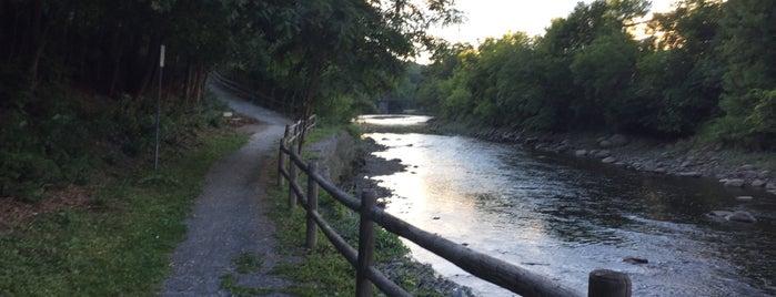 Kenduskeag Stream Trail is one of Orte, die Kirk gefallen.