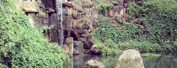 Vodopád v Kinského zahradě is one of Prague.