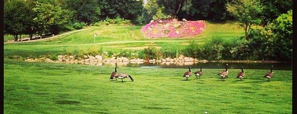 Waters Edge Golf Course is one of favorites.