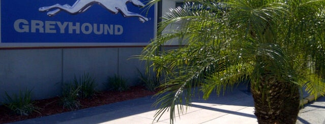 Greyhound Bus Lines is one of Travel.