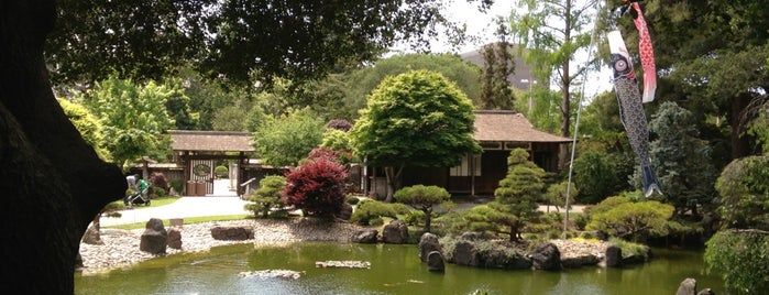 Japanese Tea Garden at Central Park is one of San Francisco.