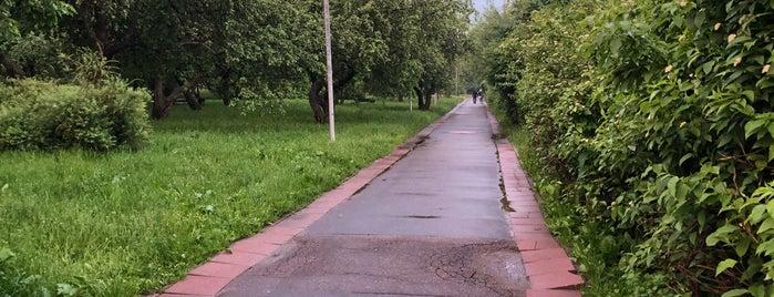 Яблоневый сад is one of Надо посетить.
