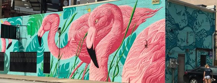 The Flamingo Rum Club is one of Locais salvos de Joey.