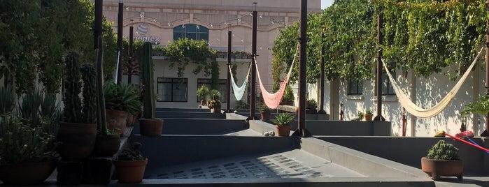 La Azotea is one of Lugares favoritos de Viri Blaz.