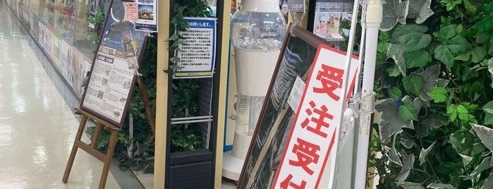 ボークス広島ショールーム / 天使のすみか広島店 is one of Hiroshima.