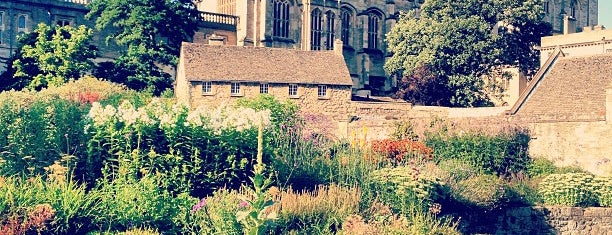 オックスフォード大学 is one of EDUCATION · University.