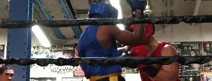 Church Street Boxing Gym is one of NY Boxing.