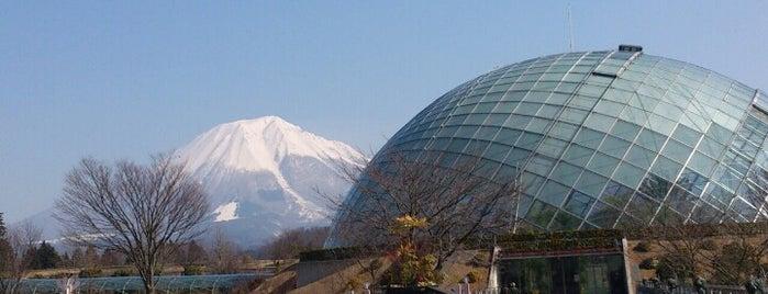 とっとり花回廊 is one of Orte, die Shigeo gefallen.