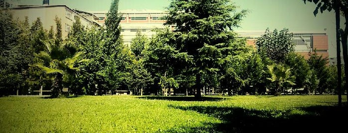 Bilgi Üniversitesi Bahçesi is one of Tempat yang Disukai Erkan.