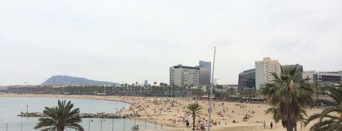 Parc del Port Olímpic is one of Ruta a Sant Martí. La ruta verda.