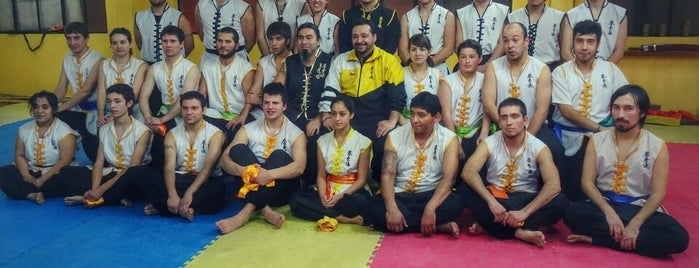 Tat Wong Kung Fu Academy is one of Chile.