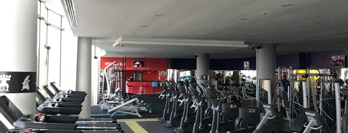 The Gym Fitness & SPA is one of Locais curtidos por Serhat.
