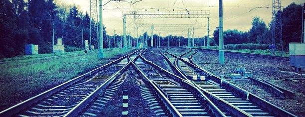 Ж/д станция Лесной городок is one of Locais curtidos por Max.