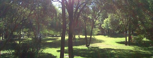 Parque Cruz Conde is one of Cordoba 17.