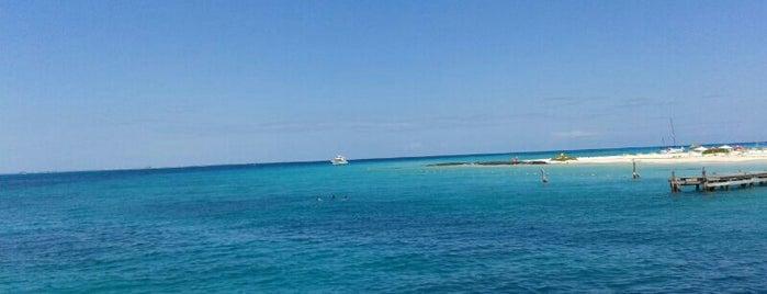 Playa Caribbean is one of Orte, die Carl gefallen.