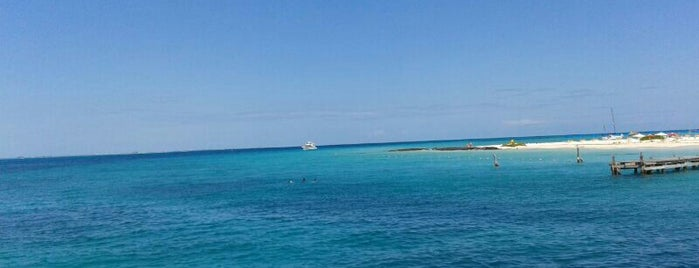 Playa Caribbean is one of Carl : понравившиеся места.