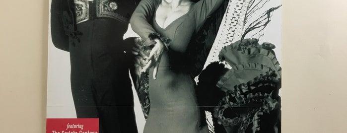 Flamenco Vivo Carlota Santana is one of Locais curtidos por Bismark.