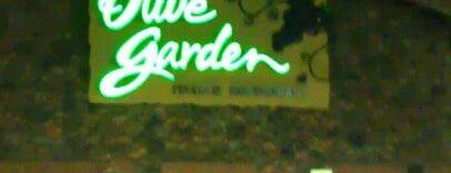Olive Garden is one of Lugares favoritos de Matthew.