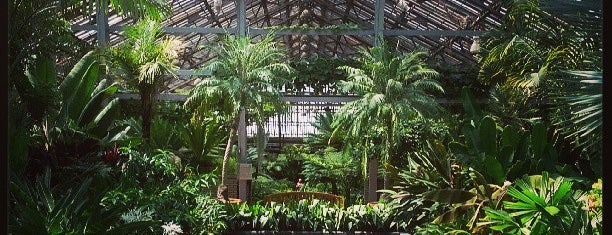 Garfield Park Conservatory is one of Lugares guardados de Darcy.