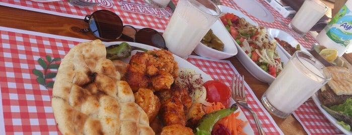fuat usta mangal yeri is one of Gözde Mekanlar.