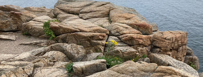 Otter Point is one of Acadia, ME.