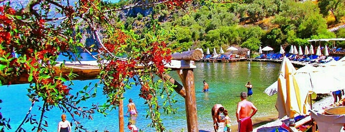 Nuri's Beach Bungalows is one of İstanbul dışı.